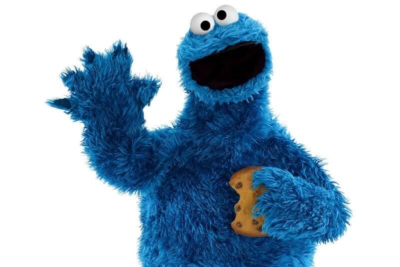 ENV.media cookies